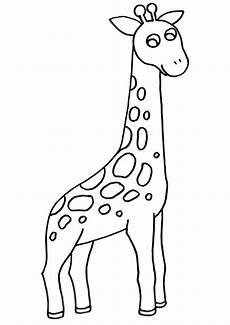 Malvorlagen Giraffe Ausmalbilder Giraffe 02 Ausmalbilder Tiere