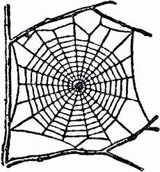 Spider Web Clipart 10 spiders and spider web clip the graphics