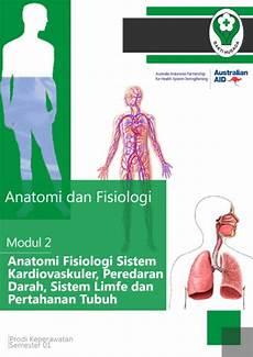 Anatomi Fisiologi Sistem Pernafasan Respirasi