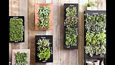 home vertical garden wall ideas