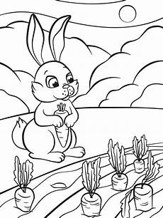 Bilder Zum Ausmalen Insekten Sch 246 Ne Malvorlagen F 252 R Kinder Beliebte Bilder Zum Ausmalen