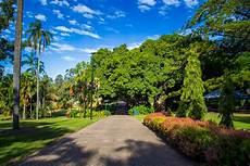 Garden Brisbane by Brisbane City Botanical Gardens Stuff To Do In Brisbane
