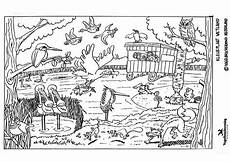 coloring page wetland free printable coloring pages