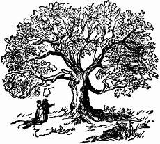 clipart etc tree clip oak tree clipart black and white image 24918