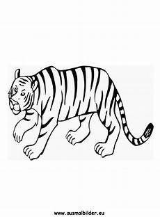 Ausmalbilder Zirkus Tiger Ausmalbild Tiger Zum Ausdrucken