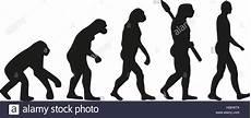 die evolution des menschen sapiens evolution stockfotos sapiens evolution