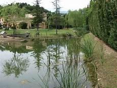 creation de bassin exterieur cr 233 ation de bassin d 233 tang cannes 06 antibes valbonne