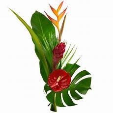 bouquet de fleurs exotiques fleurs exotiques livraison