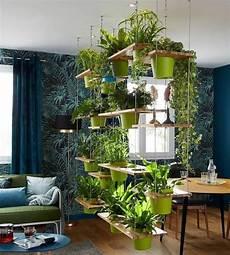 fiori a casa plantes et fleurs pour une d 233 co d int 233 rieur 15