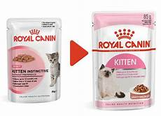 royal canin multipack kitten nassfutter in so 223 e f 252 r