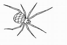 ausmalbild spinne aausmalbilder club