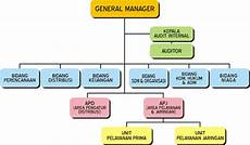 tugas kuliah tipe organisasi dan contoh