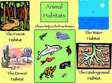 animals habits worksheets 13897 rufinos 2 186 ciclo
