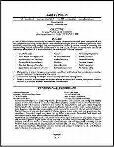 federal financial analyst resume sle the resume clinic financial analyst federal resume analyst