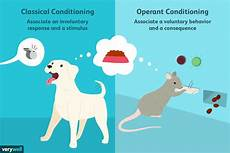 differences between classical operant conditioning