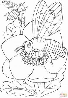 bee on a flower coloring page free printable coloring pages