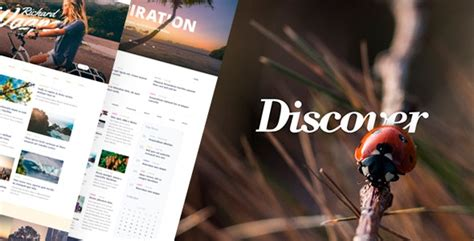 discover travel lifestyle multiconcept blog theme