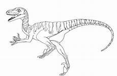 Bilder Zum Ausmalen Dinosaurier 25 Beste Ausmalbilder Jurassic World Dinosaurier