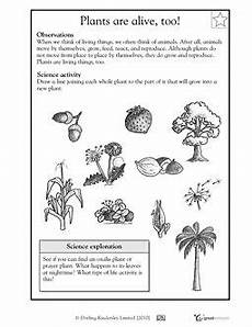 science worksheets on plants for grade 4 13724 science worksheets for 2nd grade science