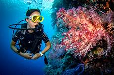palau dive packages starting from 1 499 per person
