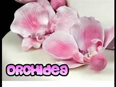 fiori di pasta di zucchero senza stini orchidea in pasta di zucchero senza stini