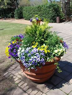 container garden ideas hgtv