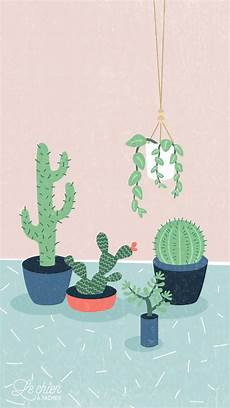 aesthetic cactus iphone wallpaper cactus pastel iphone lock wallpaper panpins fondos