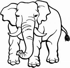 angry elephant coloring pages coloring sky