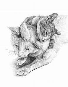 Katzen Malvorlagen Name Katzen Ausmalbilder Zum Ausdrucken Kostenlos Malbuch