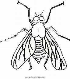 Malvorlagen Insekten Insekten 114 Gratis Malvorlage In Insekten Tiere Ausmalen