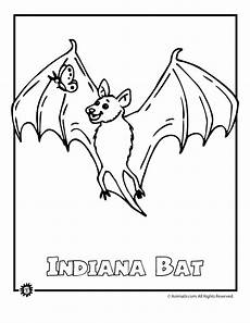 endangered animals coloring pages 16966 bat endangered animal coloring page woo jr activities