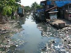 dona ayu wulandari pencemaran lingkungan