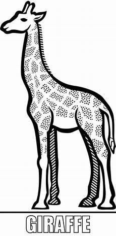 Malvorlagen Giraffe Ausdrucken Malcvorlage Giraffe Zum Ausdrucken