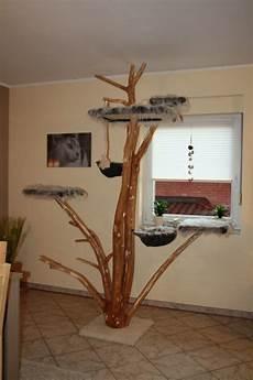 baum in der wohnung projekt kratzbaum