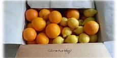 Orangen Frisch Nach Hause - spanische orangen und zitronen direkt vom baum zu mir nach