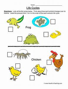 life cycles worksheet butterfly cycle ks1 denthia co