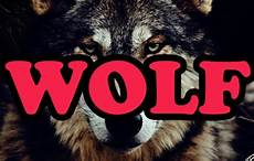 supreme wolf wallpaper alternative the creator future wolves wolf