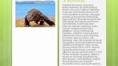 Hewan Hewan Langka Yang Ada Di Indonesia Part 1