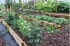 Beete Anlegen Inspirationen F 252 R Ihre Gartengestaltung