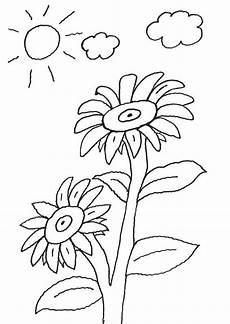 ausmalbild blumen sonnenblume kostenlos ausdrucken