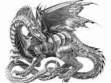 Malvorlagen Drachen X Reader Bilder Drache Gezeichnet Wei 223 Er Hintergrund