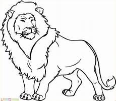 30 Mewarnai Gambar Singa Untuk Tk Paud Sd