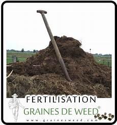 terre pour faire pousser cannabis l engrais pour le cannabis pousser du cannabis