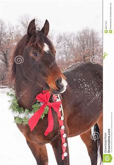 with a wreath and jingle bells stock image