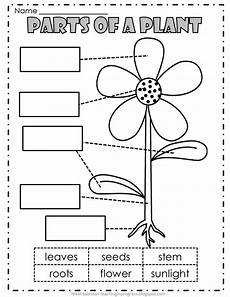 types of plants worksheets for grade 2 13744 parts of a plant plants and worksheets on