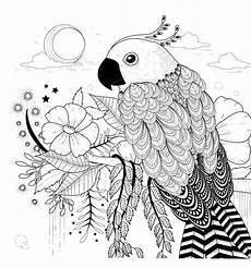 Kostenlose Malvorlagen Tiere Leveln Pin Jo De Auf Color Mandala Malvorlagen Papagei