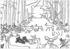 coloring pages animals in the forest 17029 free coloring page coloring does and fawns in forest by marion c does and fawns in the