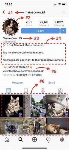 Gambar Cantik Untuk Profil Instagram Agen Meme