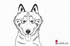 ausmalbild hund 187 husky zum ausmalen kribbelbunt
