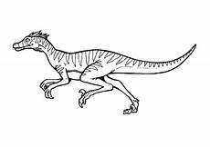 coloring page velociraptor img 9376 coloring pages